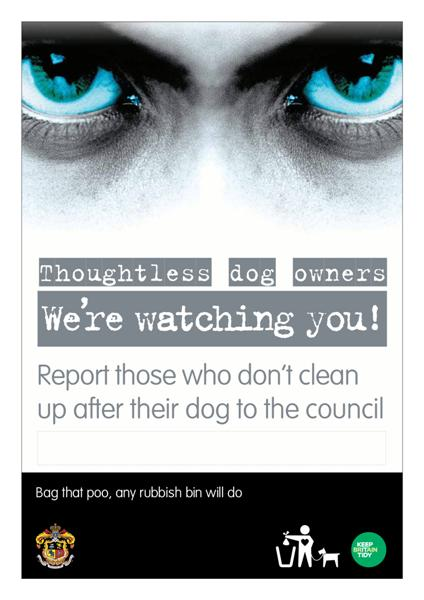 10996 KBT Dog Poster - Report those - Douglas Medium