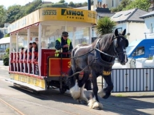 Just the ticket: Council updates horse tram ticket management system