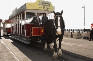 2012 Douglas horse tram service now operating