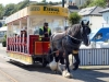Council to auction surplus horse trams