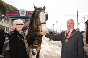 Horse tram 2015 summer season launched