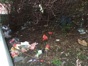 Council to step up action against litter