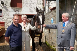 Stable relationship: Mayor visits tram horse stables